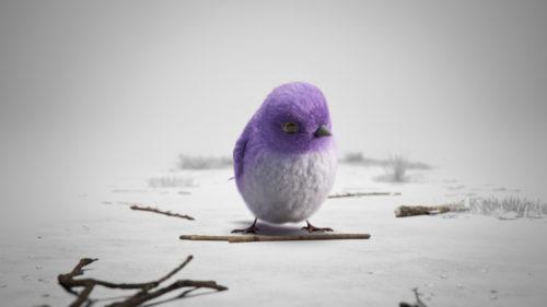 bird_close