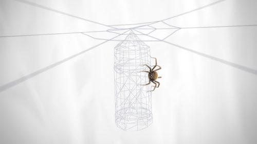 spider_far